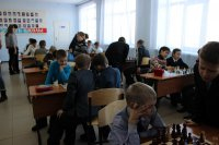 Новости шахмат