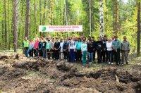 Акция «Всероссийский день посадки леса» на территории Ульяновской области