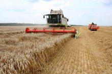 Ульяновские хлеборобы намолотили более миллиона тонн зерна