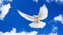 Православный форум «Православие: наследие, современность, будущее»