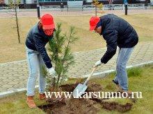 Акция «Посади и вырасти свое дерево»