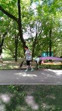 Благоустройство Карсунского парка