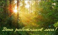 16 сентября – День работников леса