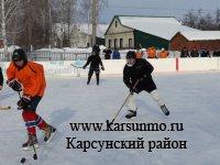 Турнир по хоккею с шайбой