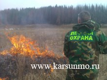 В лесах Ульяновской области объявлен пожароопасный сезон
