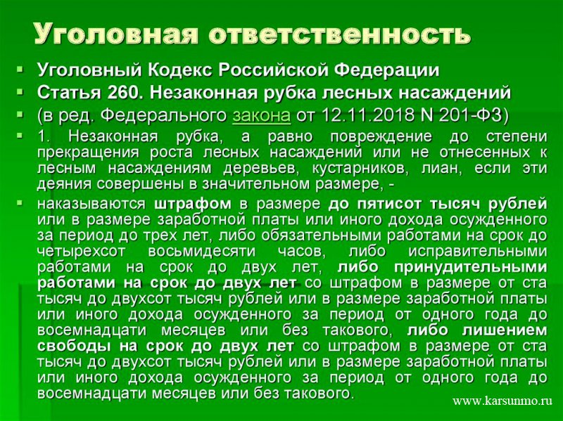 Статья 260 УК РФ