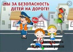 В Ульяновской области стартует комплекс профилактических мероприятий «Безопасная дорога в защиту ребенка!»