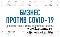 Дополнительные меры государственной поддержки бизнеса в связи с распространением новой коронавирусной инфекции (COVID-19)
