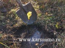 В Карсунском районе заложен Сад памяти🌲