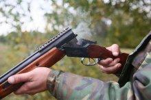 Ульяновская межрайонная природоохранная прокуратура разъясняет Правила охоты