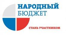 """Реализация проекта """"Народный бюджет"""""""