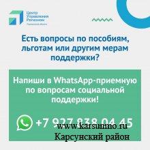 В Ульяновской области начала работу WhatsApp-приемная по вопросам социальной поддержки