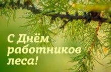 19 сентября – День работников леса